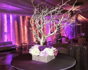 event designer Stephanie Wiltz
